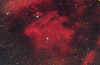 Ic 5070, Pelican Nebula. Telescope: WO FLT 98 at f/4.9 Camera: QHY8 Exposures: Ha: 5hrs 30min. rgb: 1 hr, total 6hours 30min, 24-26/8/2012 Processing: Deepskystacker, Pixinsight, Ps Location: Corinthia Greece, sqm 20.5
